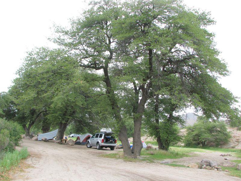 Oak-Flat-Campground